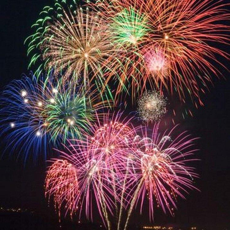 Fireworks Photo Back drop